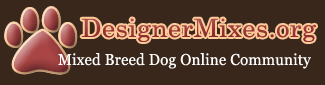 Welcome to the Designer Dog Community